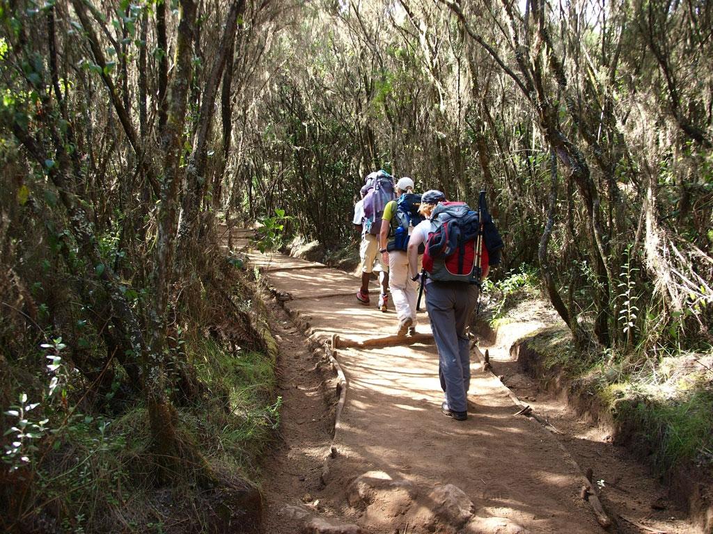 5 Days Kilimanjaro Marangu Route .