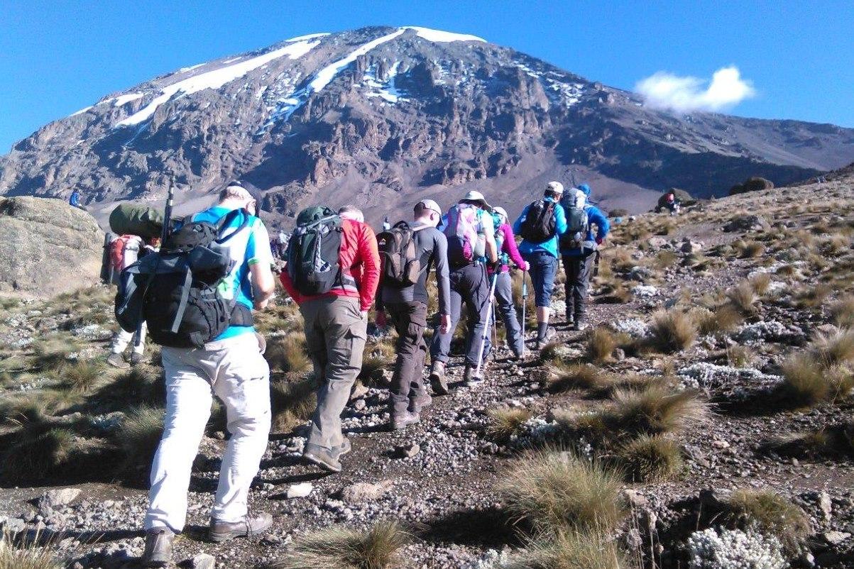 10 Day Mount Kilimanjaro Trekking And Camping Wildlife Safaris