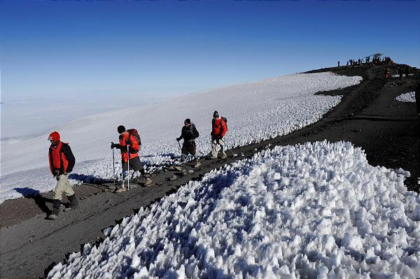 9 Day Mount Kilimanjaro Trekking And Camping Wildlife Safaris