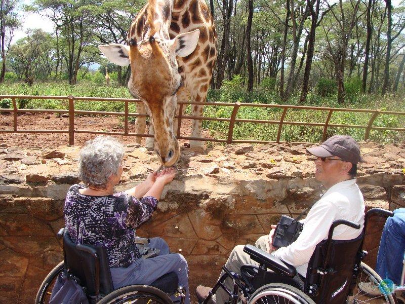 10 Day Tanzania Wheelchair Accessible Safaris