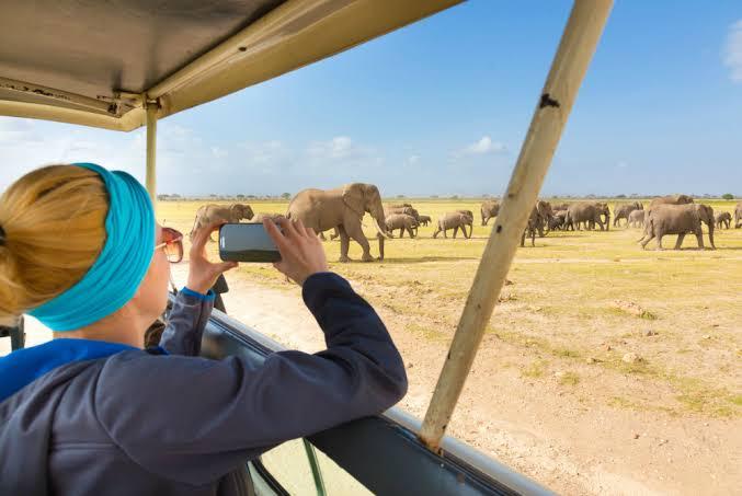 11 Days Tanzania Women Trekking And Wildlife Safari